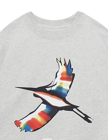 Crewneck Heron Rainbow Grey Melange Blac