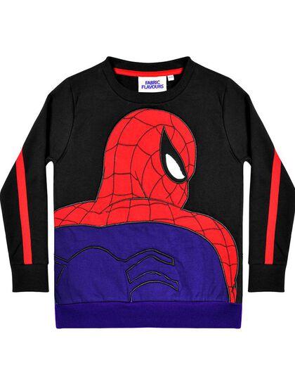 Spider-Man Applique Sweatshirt