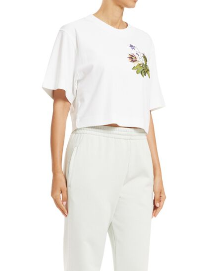 Botanical Arrows Crop T-Shirt
