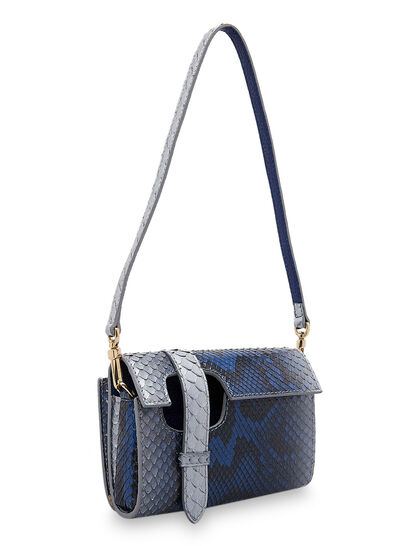 Wallet Bag In Full Python In Planet Earth