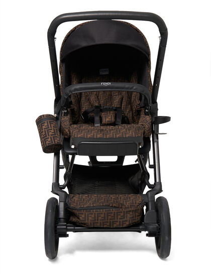 Stroller Removable Seat