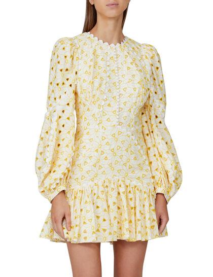 Walker Mini Dress